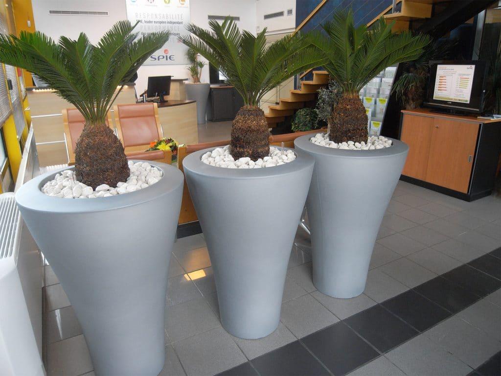 bacs arrondis pour plantes vertes