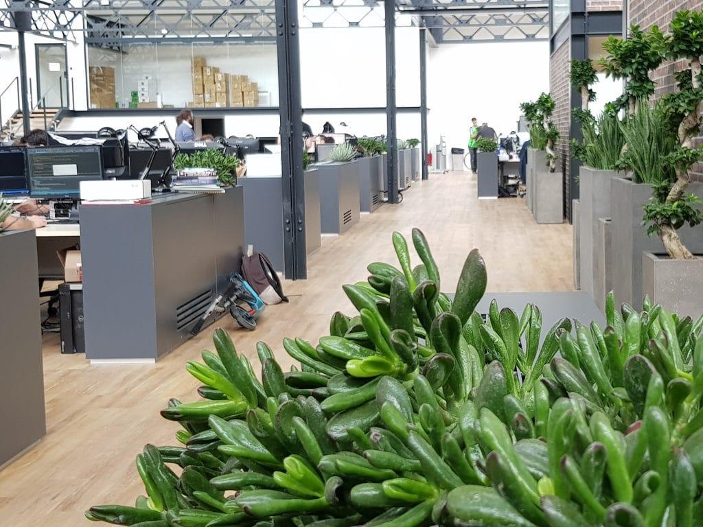 idée d'ajout de végétal dans des bureaux d'entreprise à Lyon