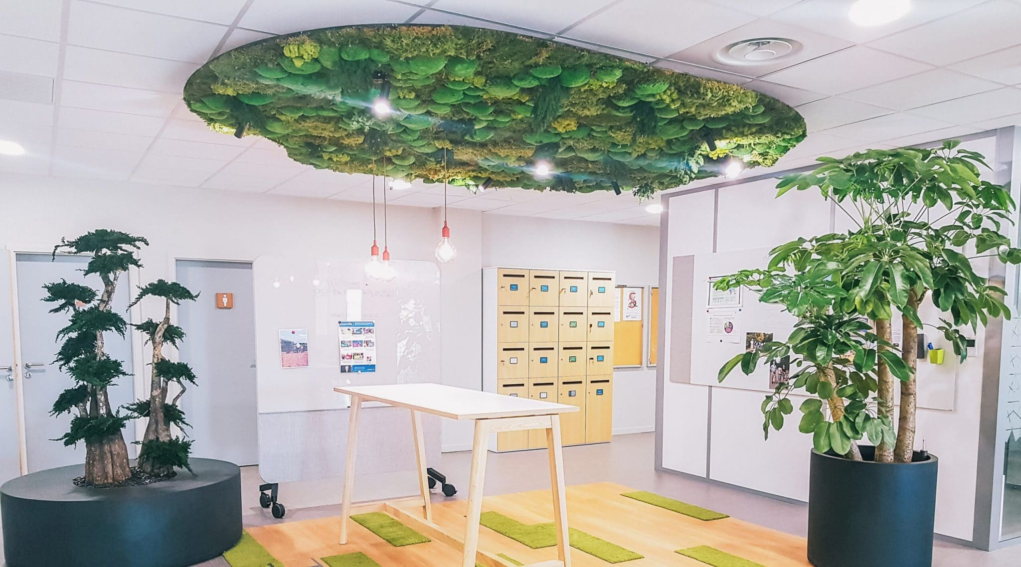 décoration végétale entreprise lyon