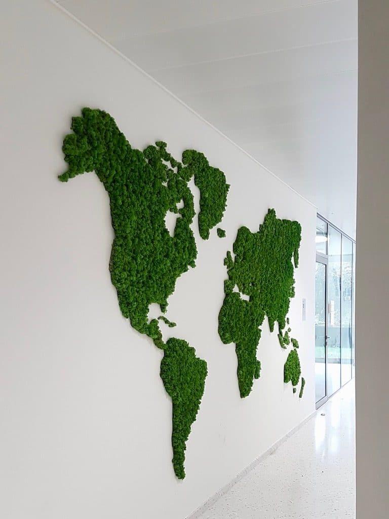 bureau design entreprise avec mappemonde murale en mousse liquen stabilisée
