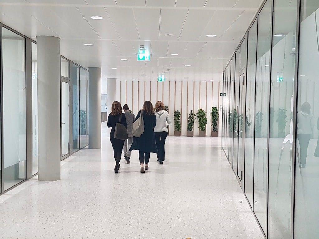 exemple de bureau d'entreprise design avec plantes vertes