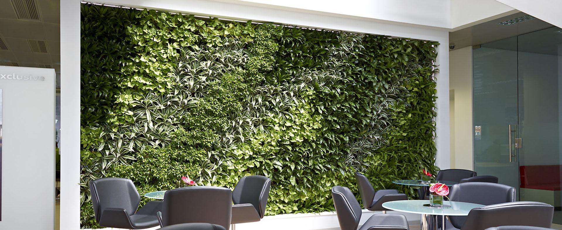 mur végétal naturel dans le salon d'attente d'une entreprise