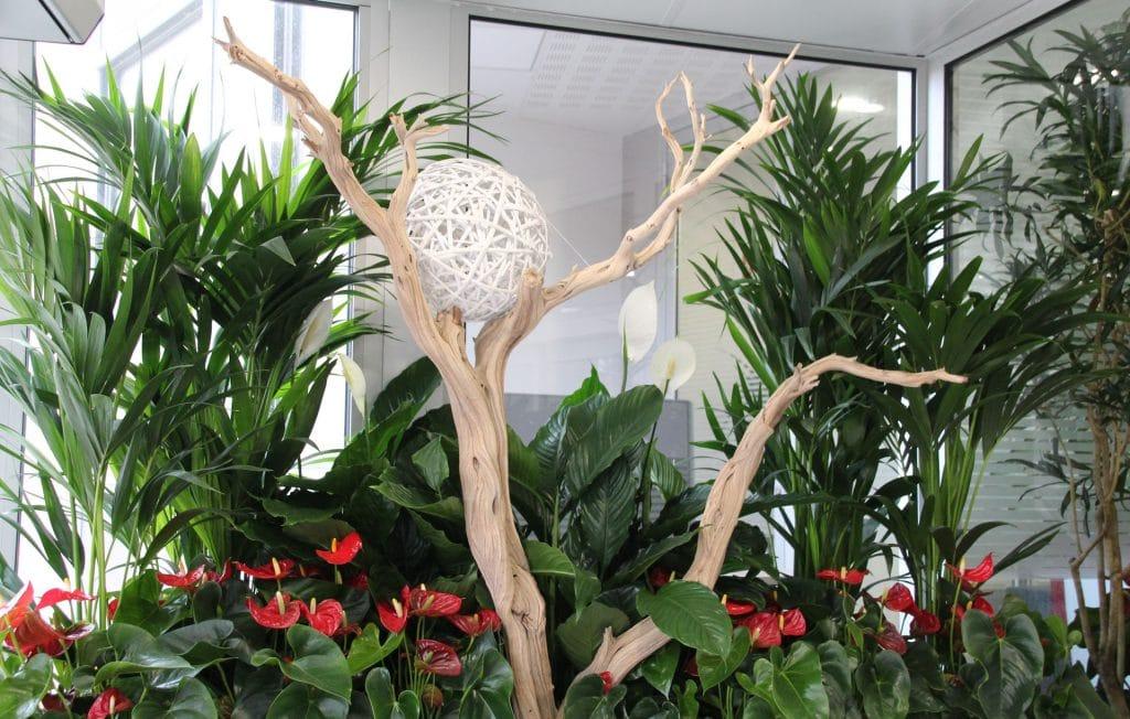composition florale et végétale