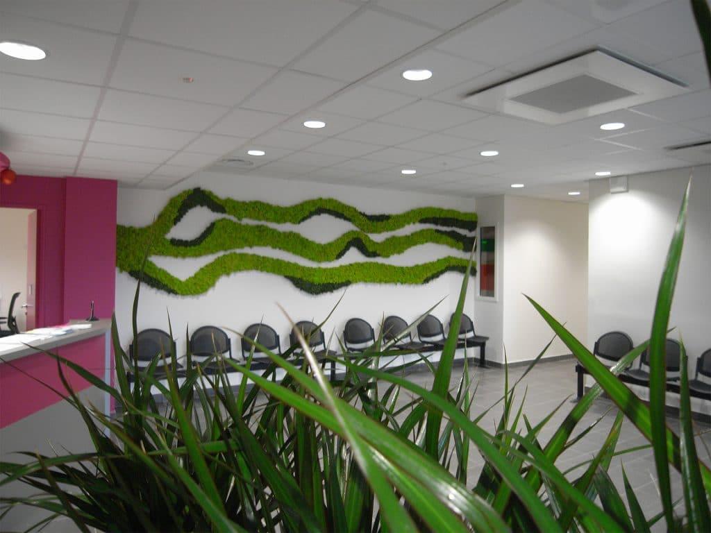 décoration d'un mur végétal pour égayer un espace d'accueil d'une entreprise