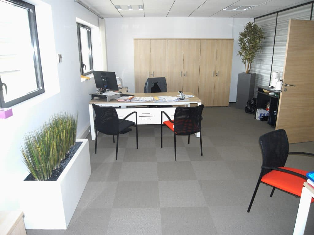 idée de décoration végétal pour bureau