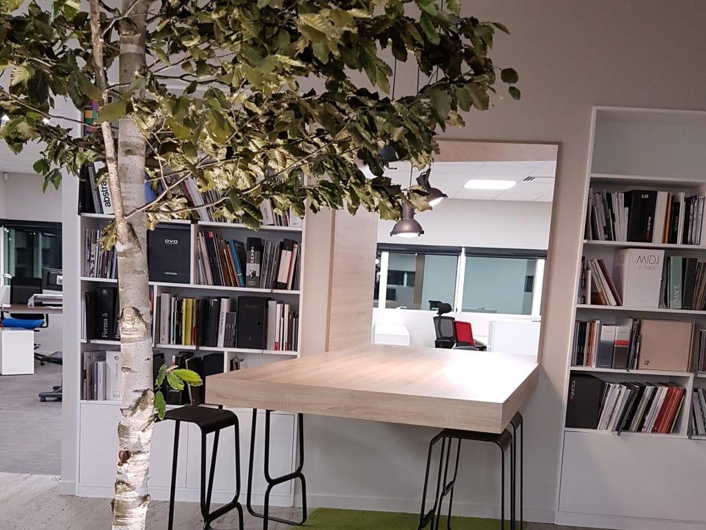 arbre avec feuillage stabilisé comme décoration intérieur d'entreprise