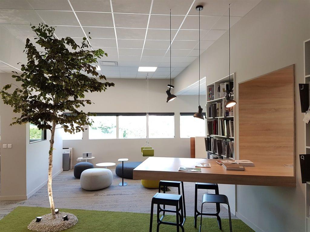arbre stabilisé idée décoration végétale