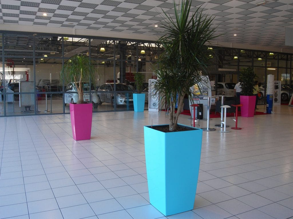 R alisation am nagement d int rieur v g tal pour citroen for Salon vegetal lyon