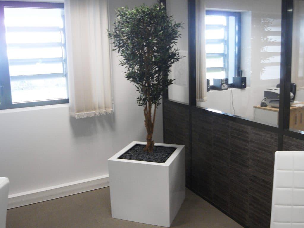pot carré blanc pour plante verte