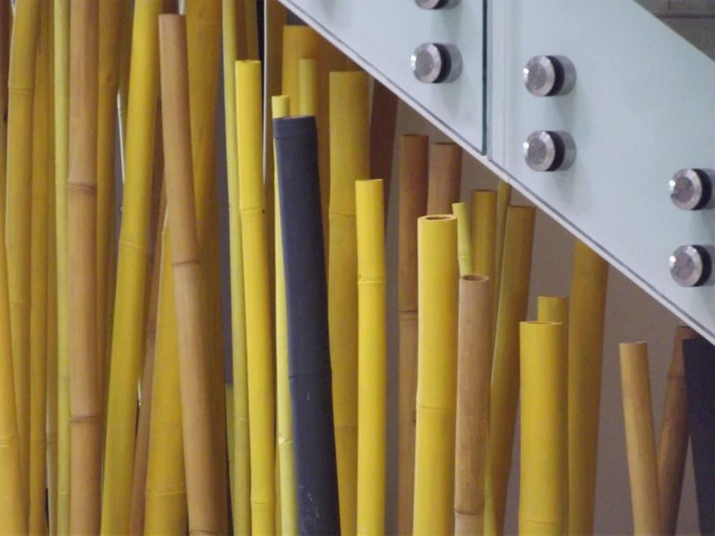 troncons de bambou colorés