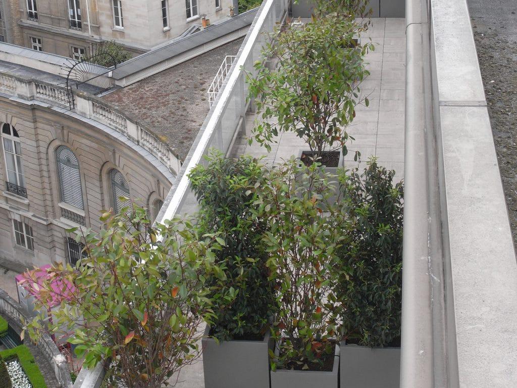 cloison végétale installée à paris