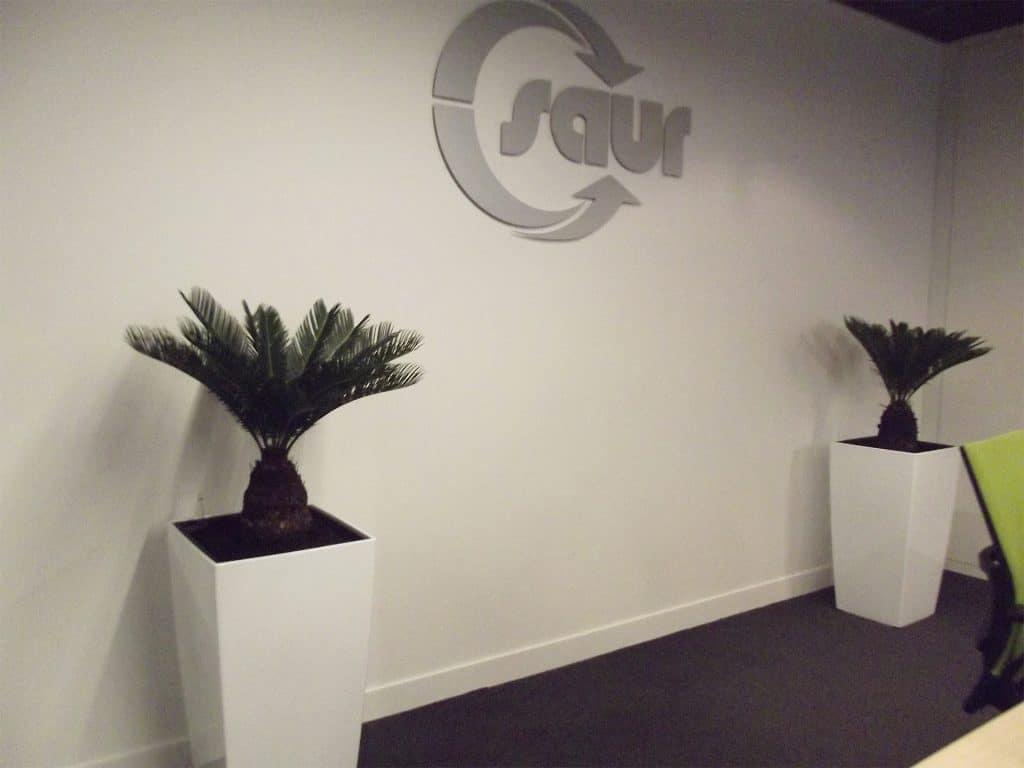 plantes vertes dans salle de réunion