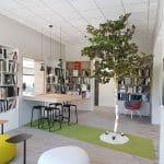 idée de décoration végétale avec arbre intérieur