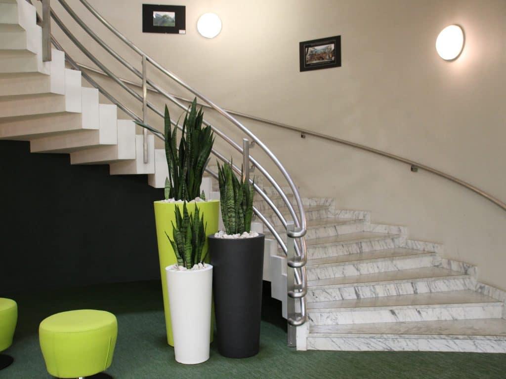 grand pot arrondi avec plantes vertes dans cafétéria d'entreprise