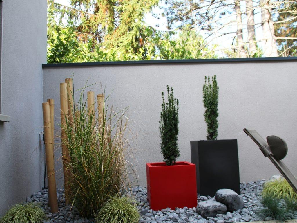 patio avec plantes végétales