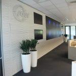 plantes vertes dans un open space d'entreprise