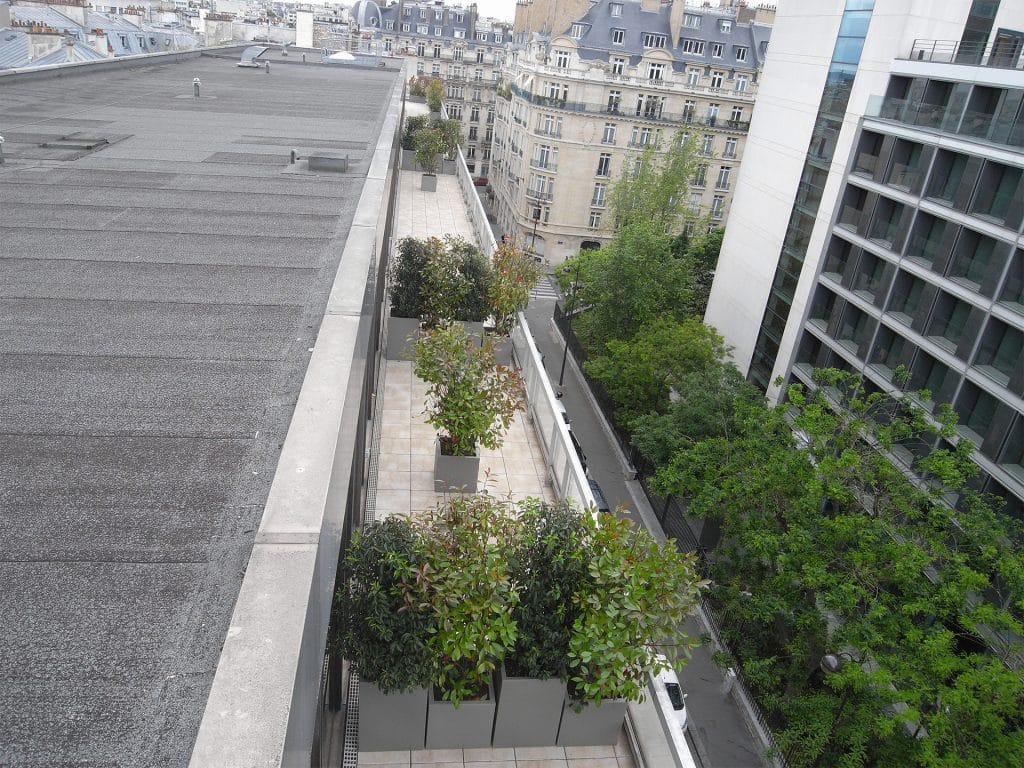 vue de végétaux qui cloisonne la terrasse d'une entreprise