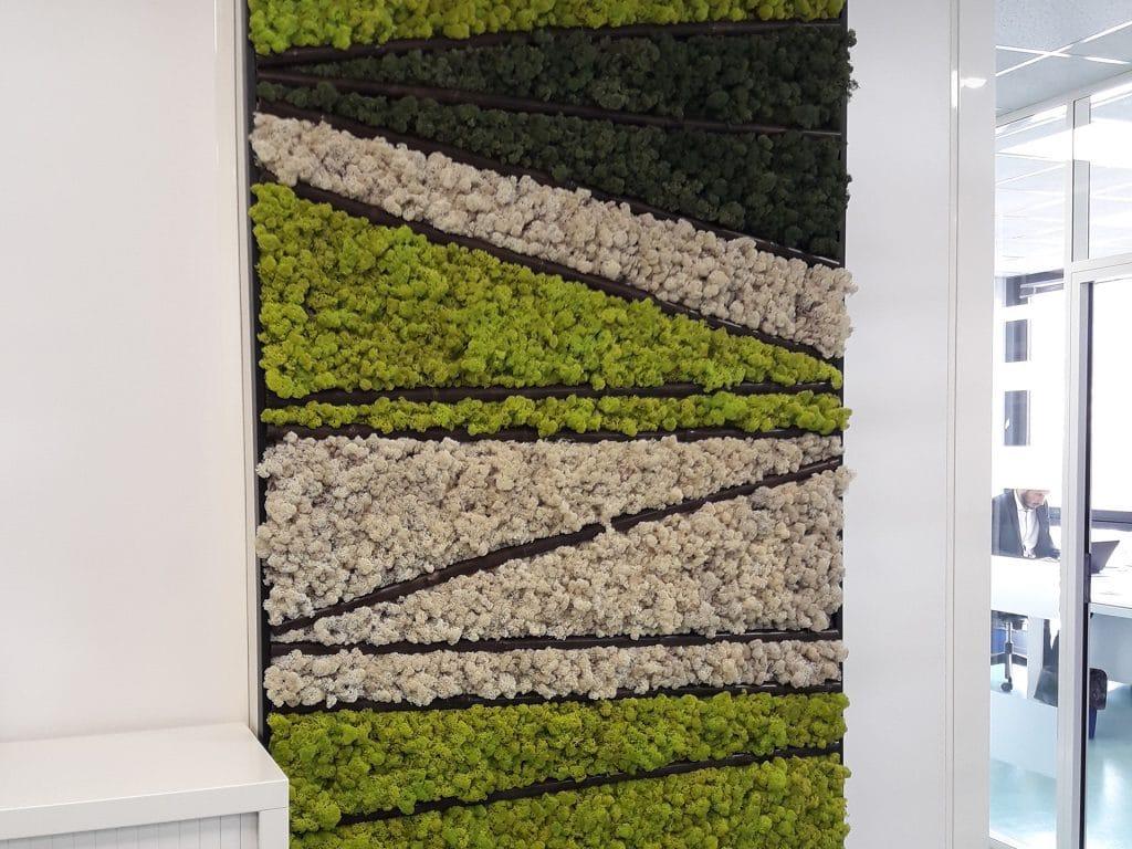 du végétal stabilisé pour habiller vos murs