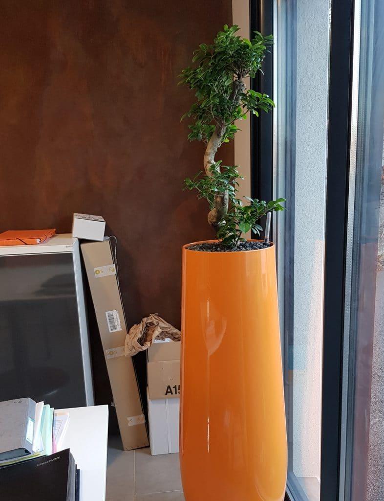 pot orange vernis pour plantes stabilisées