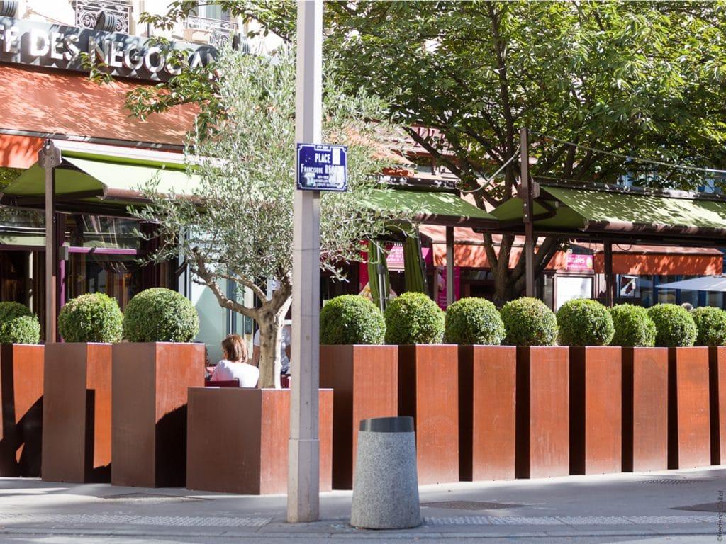 aménagement végétal de terrasse