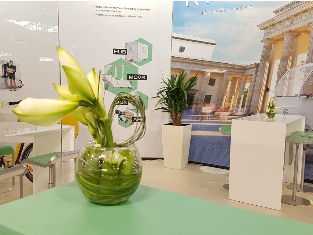 idée aménagement plante salon