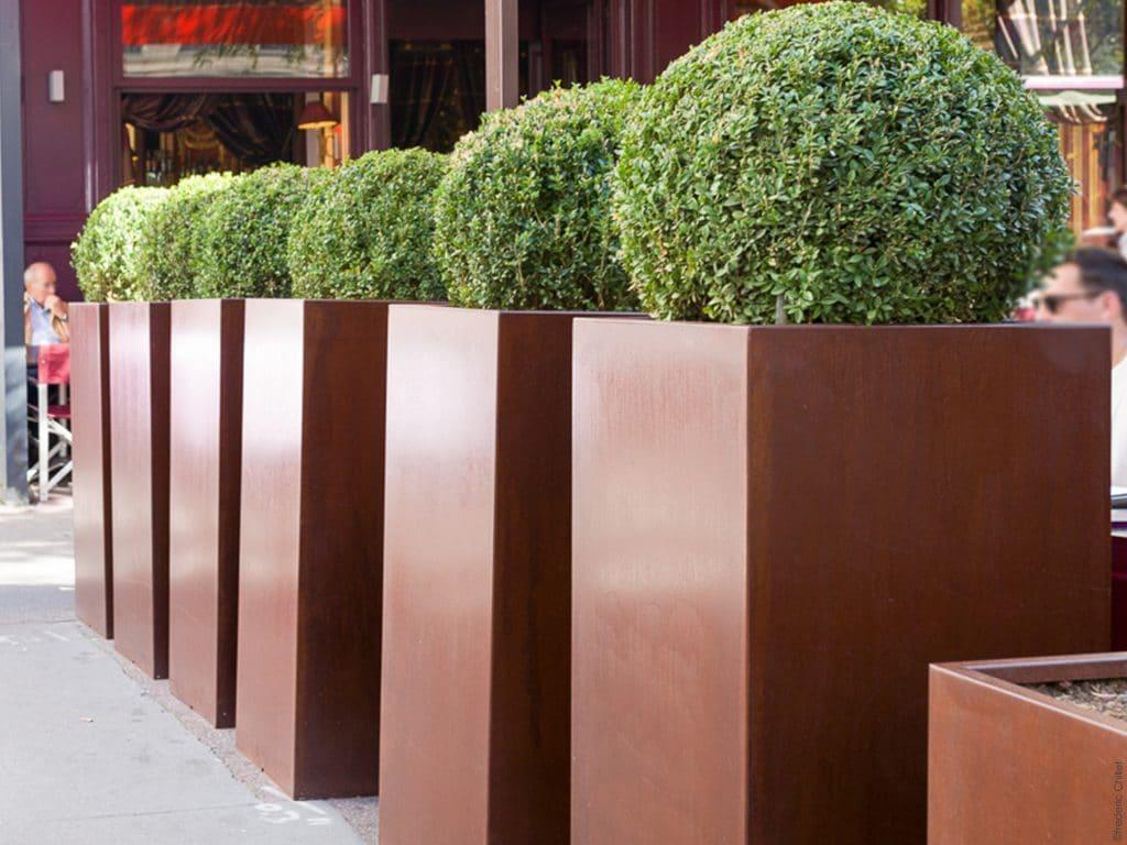 idée aménagement terrasse buis et pot