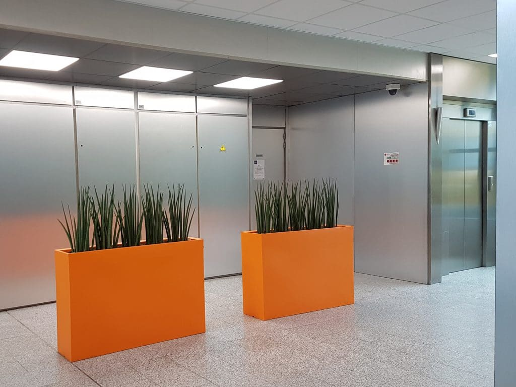 quelles plantes choisir pour vos bureaux