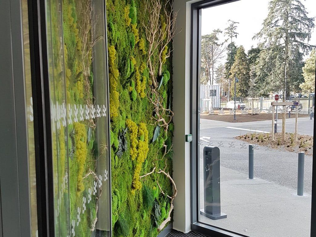 mur végétal stabilisé pour entreprise