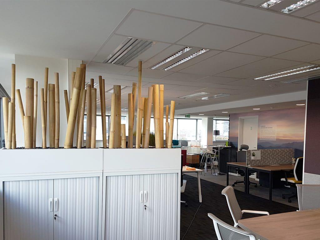 décoration entreprise bambou
