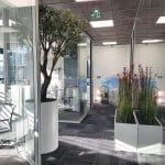 idée aménagement végétal entreprise