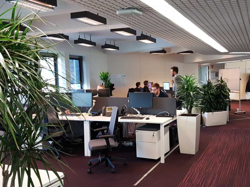 plantes vertes aménagement de bureaux
