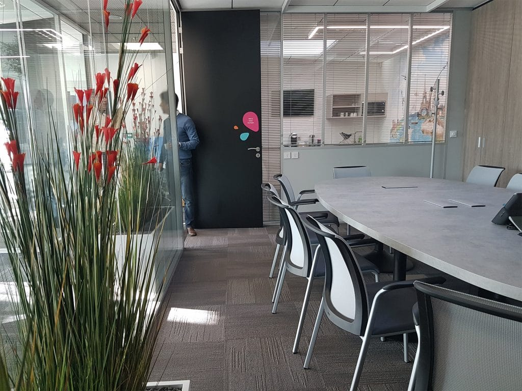 plante dans salle de réunion