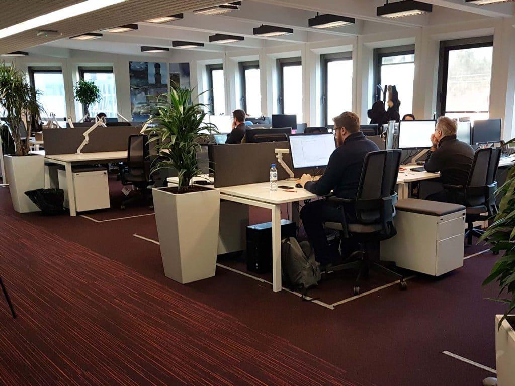 Des plantes vertes pour l aménagement de vos bureaux