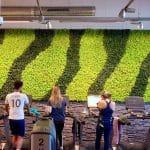 murs vegetaux stabilisés paysagiste interieur