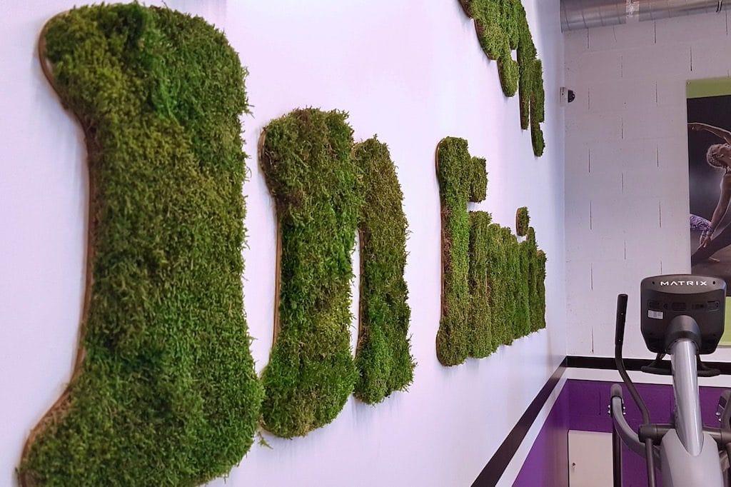texte végétal décoration salle de sport