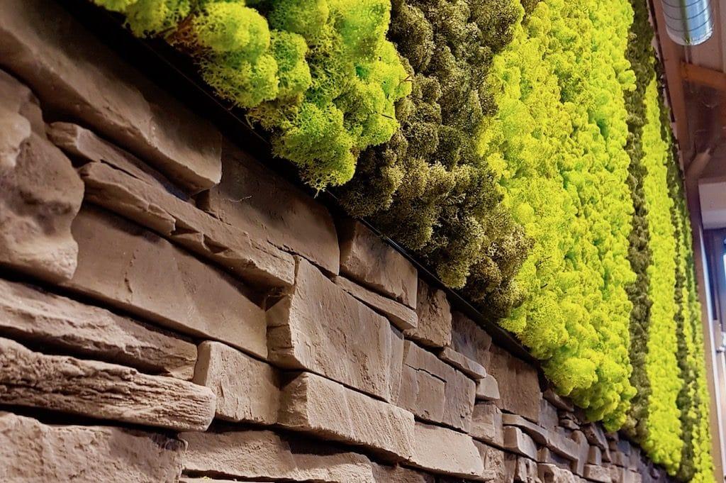 détails de mur végétal