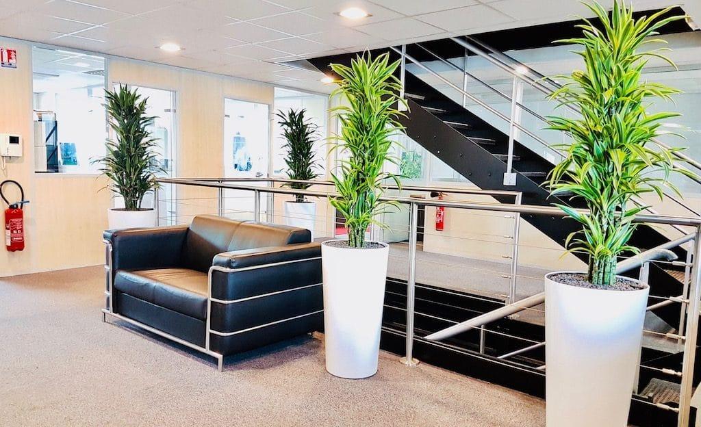 amenagement plante bureau entreprise