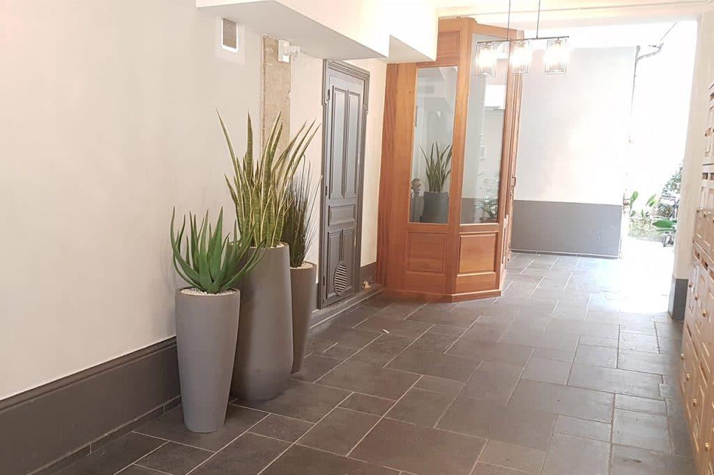 amenagement végétal entree immeuble renovation