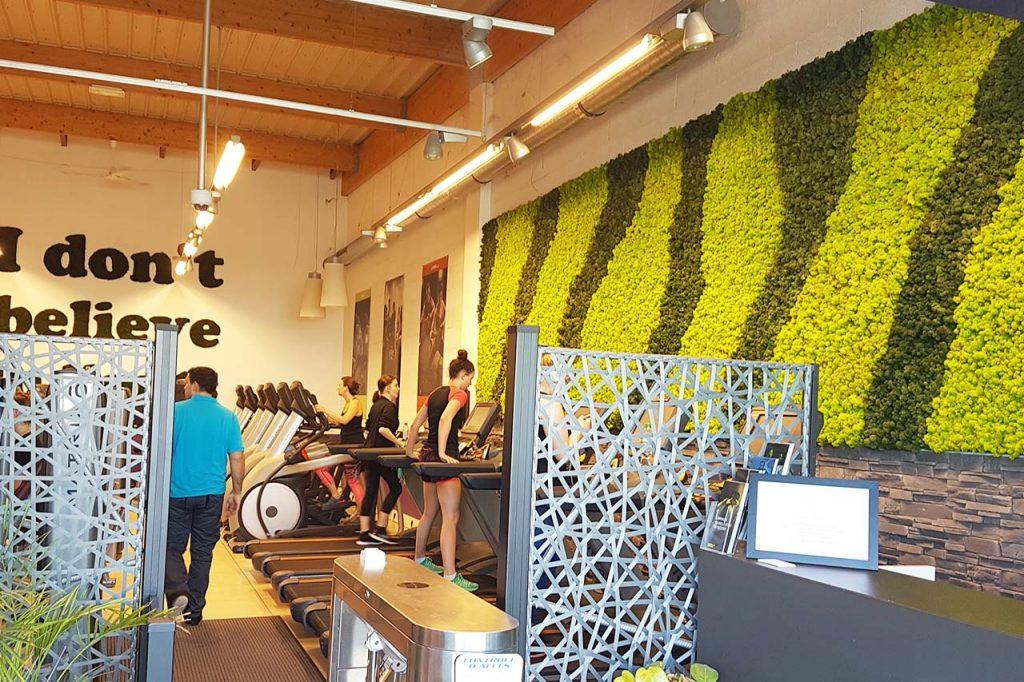 murs végétaux stabilisés