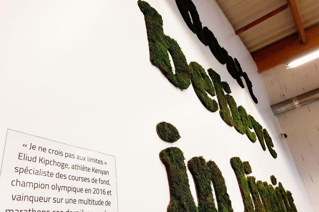 murs végétaux slogan végétal salle de sport