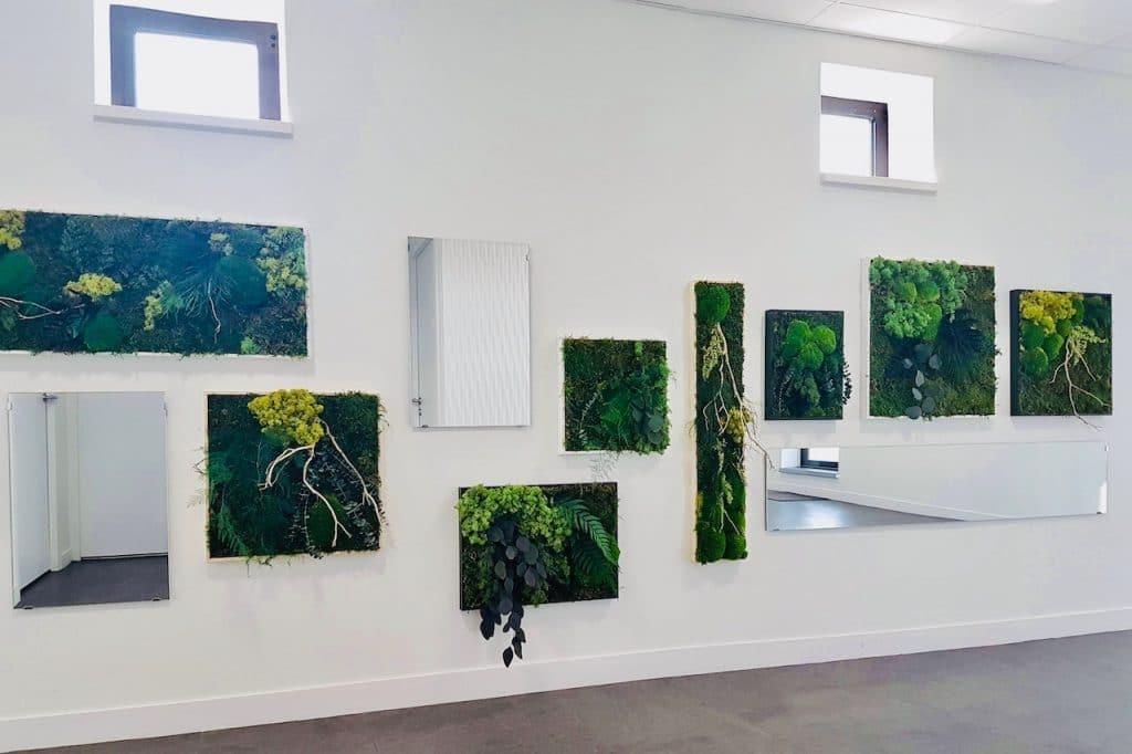 décor végétal en entreprise mur végétal stabilise