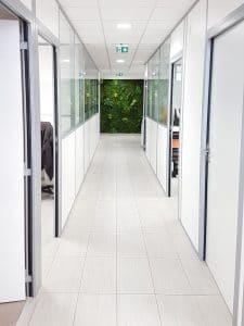 aménagement végétal intérieur mur stabilisé