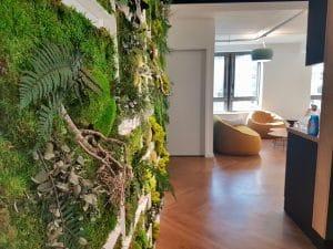 mur végétal stabilisé en entreprise
