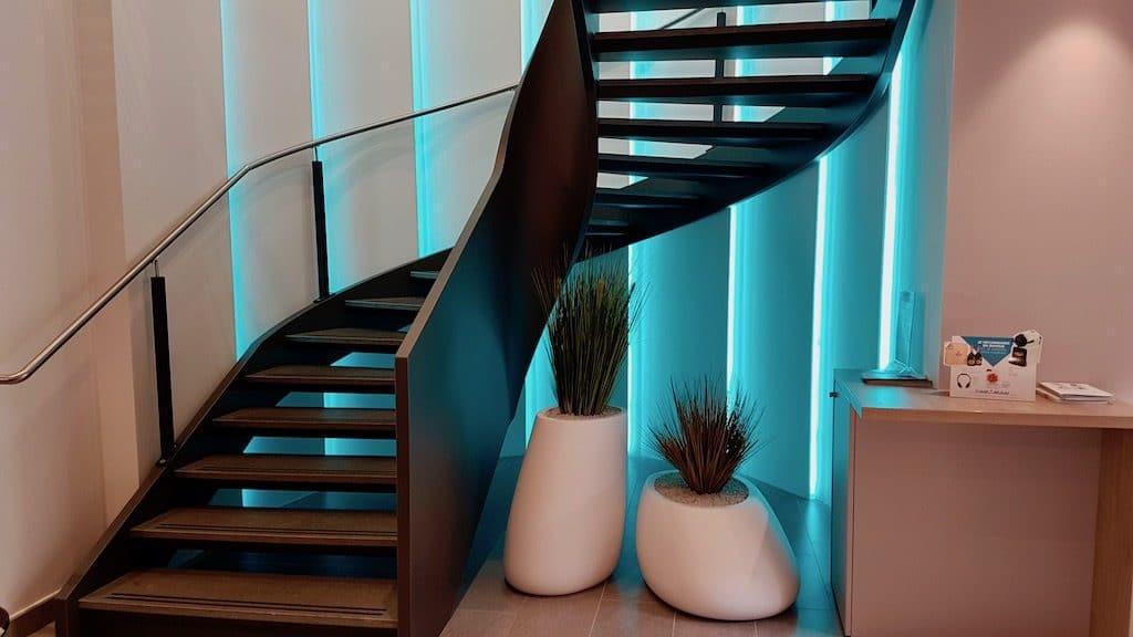 paysagiste décorateur intérieur à Lyon graminées en pot