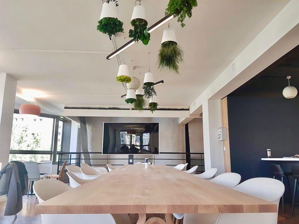 plante suspendues pour aménagement d'un réfectoire d'entreprise
