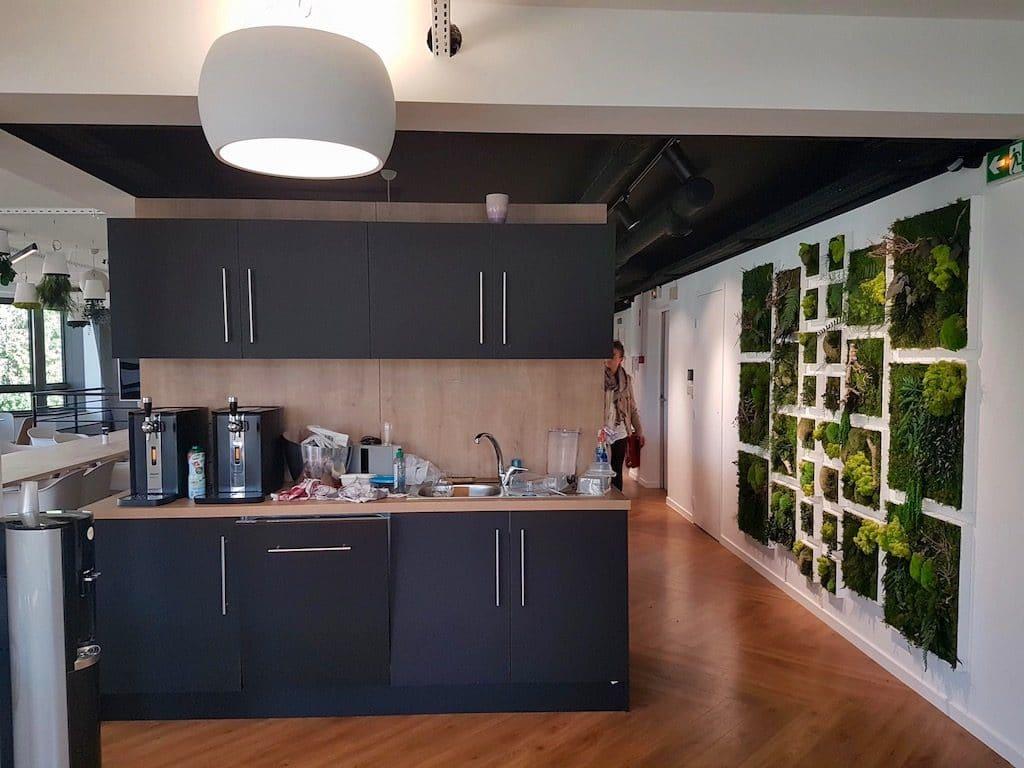 mur stabilisé pour décor végétal dans une cafétéria d'entreprise