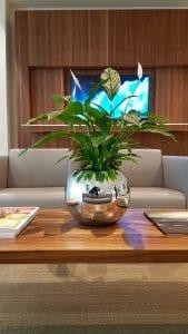 decoration vegetal salon concession automobile luxe