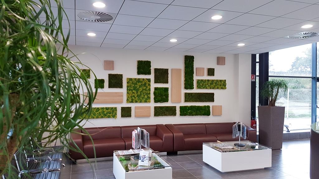 mur vegetal stabilise sur-mesure